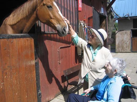 Výlety ke koním